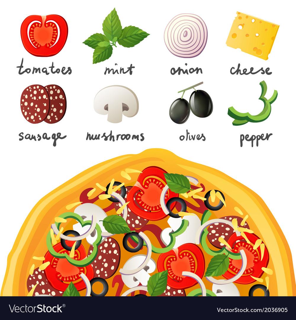 Pizza ingredients vector   Price: 1 Credit (USD $1)