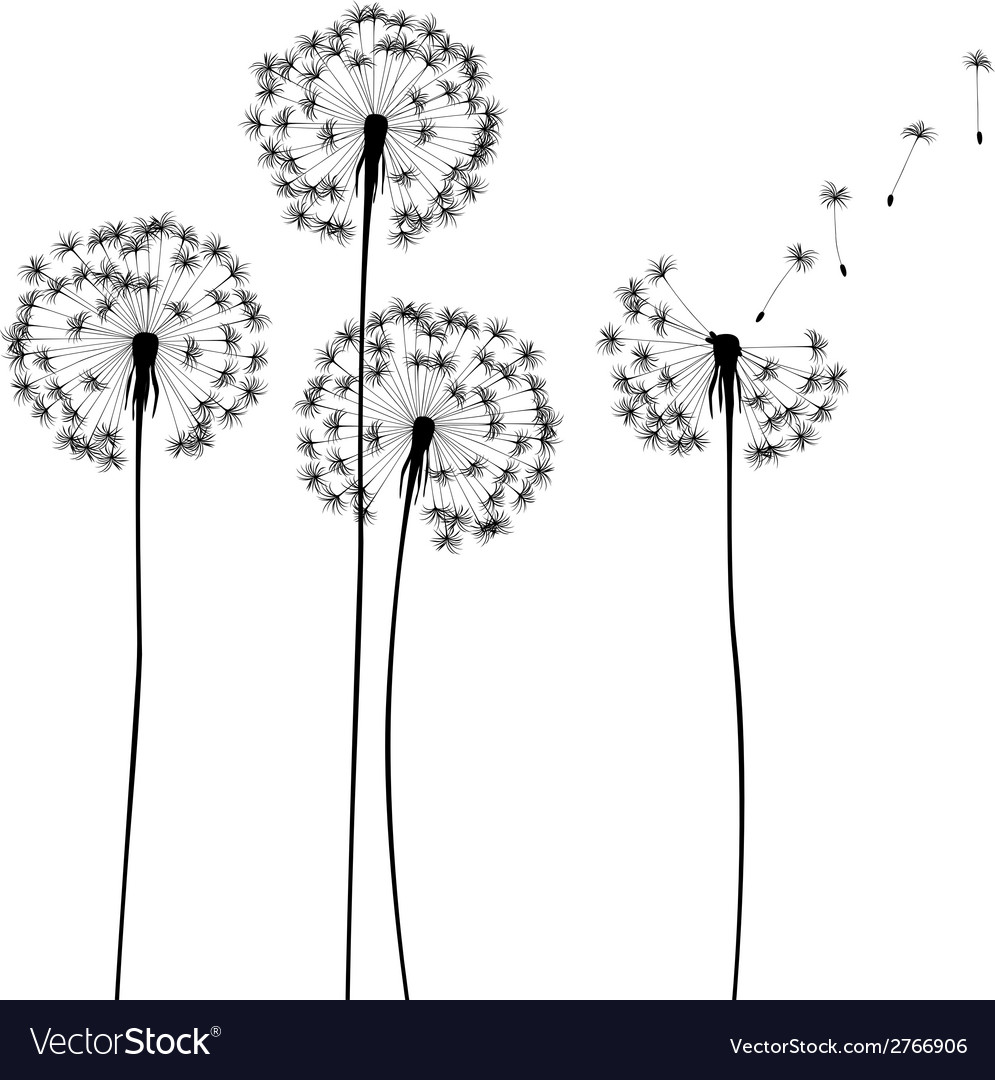 Meadow weeds - dandelions silhouettes vector | Price: 1 Credit (USD $1)