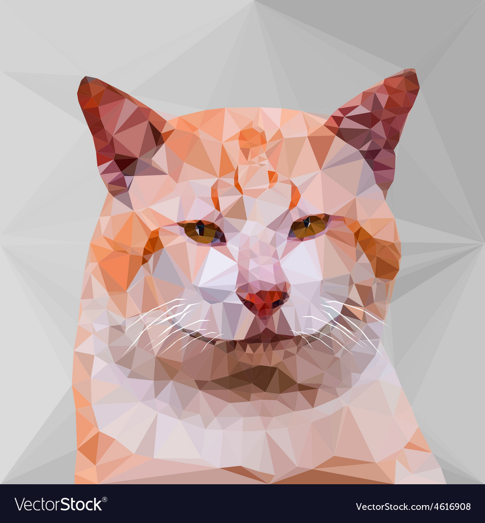 Low poly geometric of cat vector | Price: 1 Credit (USD $1)