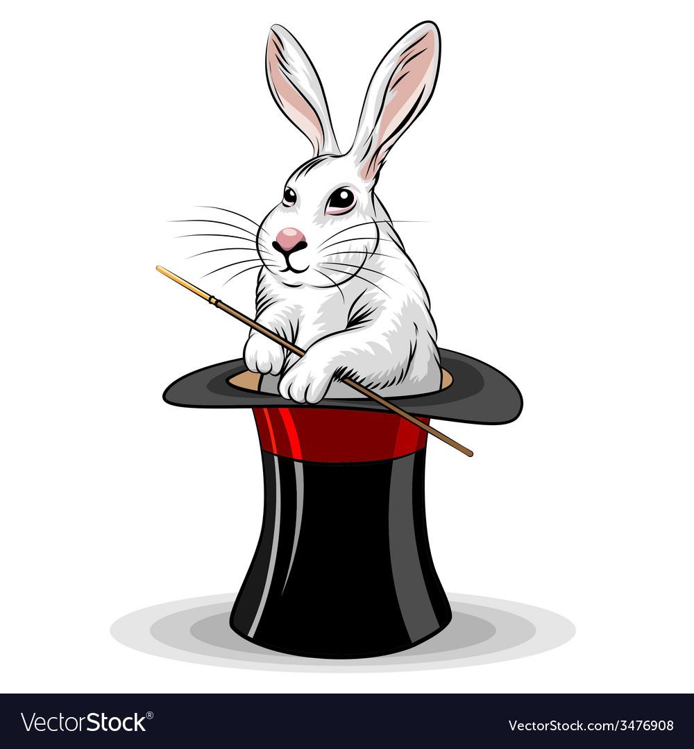 Rabbit in a hat vector | Price: 1 Credit (USD $1)