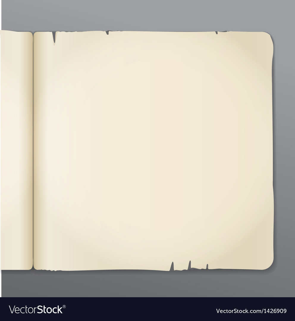 Old opened book pages background vector | Price: 1 Credit (USD $1)