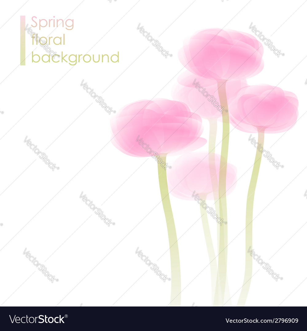 Ranunculus bouquet vector | Price: 1 Credit (USD $1)