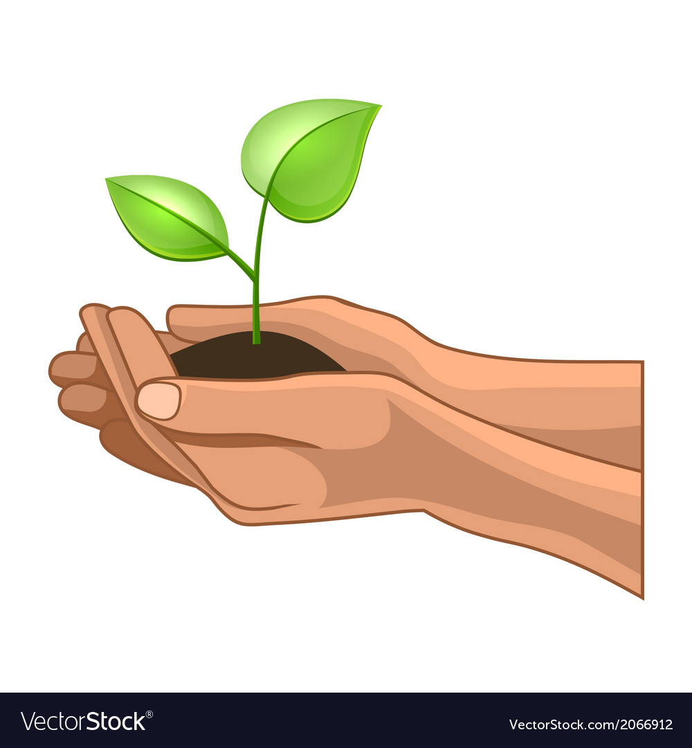 Hands and plant on white background vector | Price: 1 Credit (USD $1)