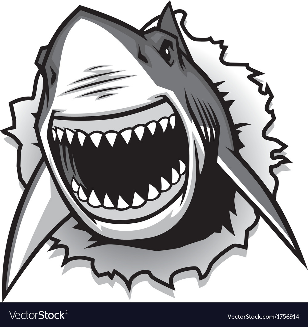 Great white shark ripping with opened mouth vector | Price: 3 Credit (USD $3)