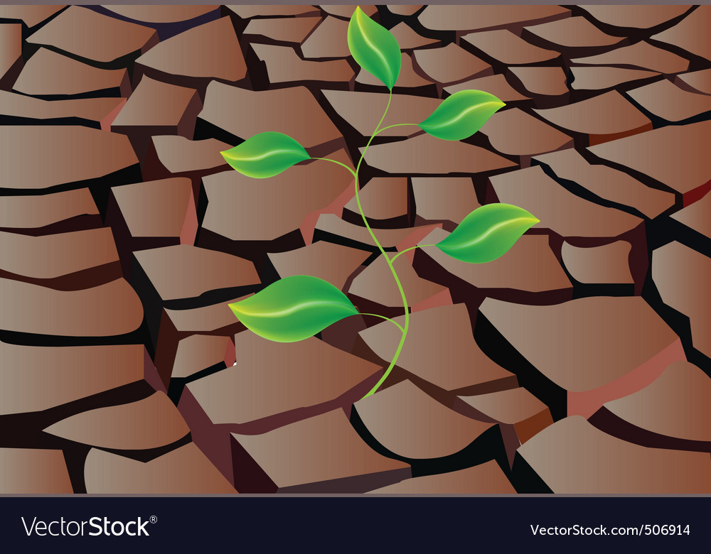 Sprout in dry land vector | Price: 1 Credit (USD $1)