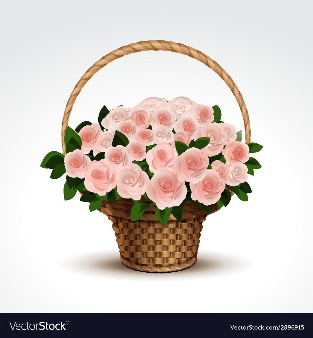 Basket of pink roses isolated vector | Price: 1 Credit (USD $1)
