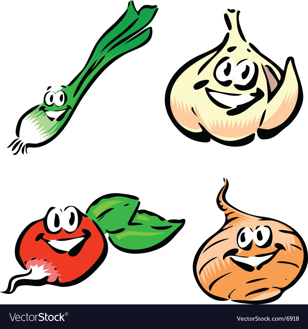 Green onion garlic radish onion vector | Price: 1 Credit (USD $1)