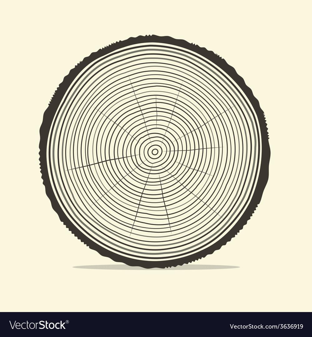 Tree rings vector | Price: 1 Credit (USD $1)