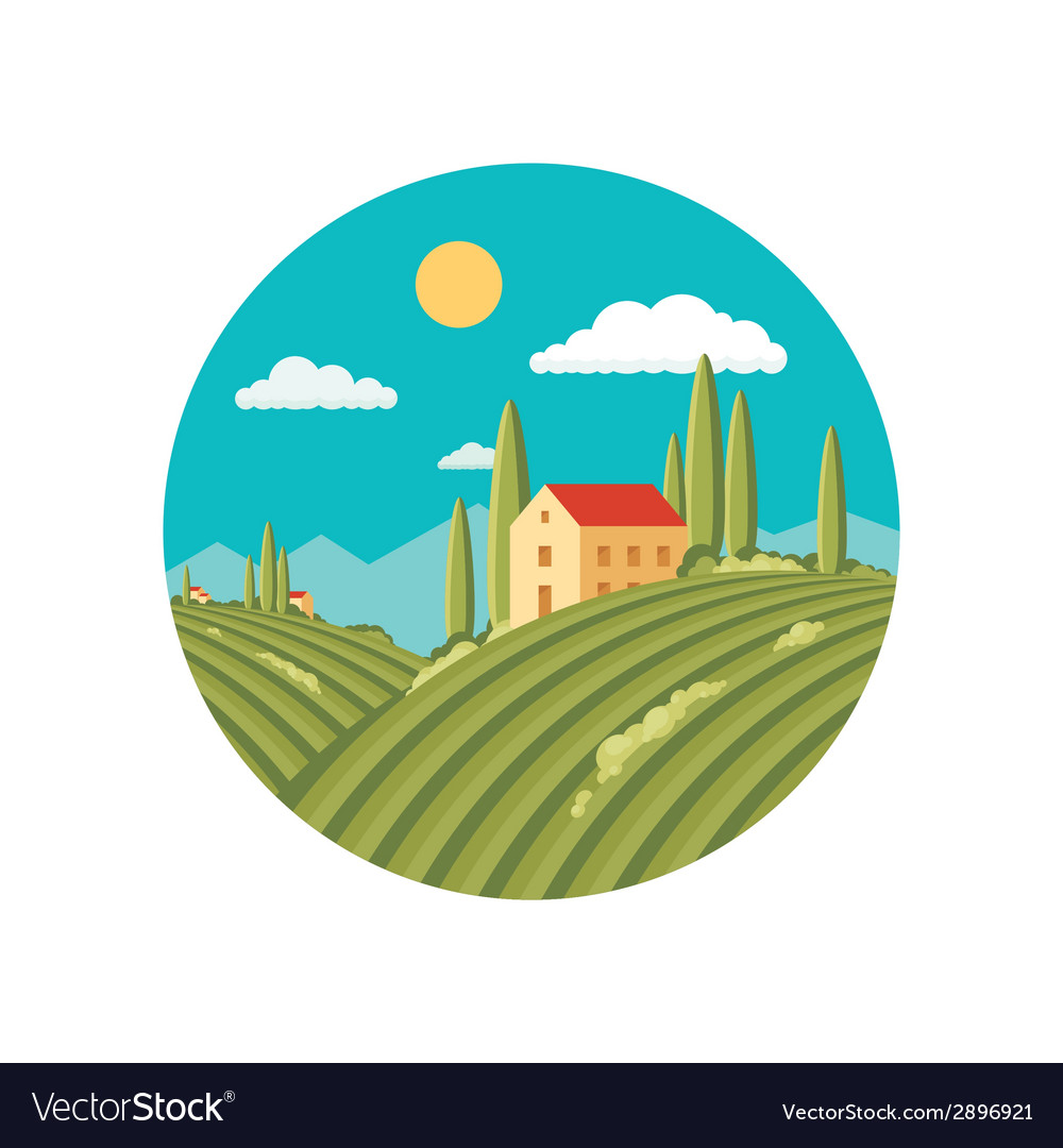 Agriculture landscape with vineyard vector | Price: 1 Credit (USD $1)