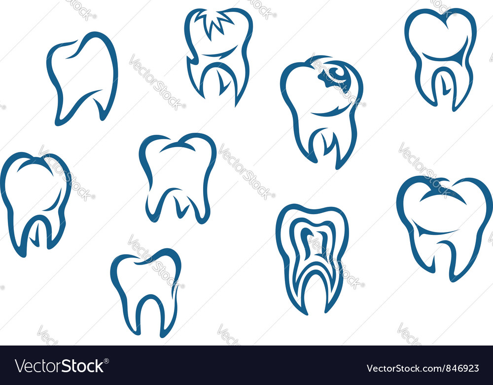 Human teeth set vector | Price: 1 Credit (USD $1)