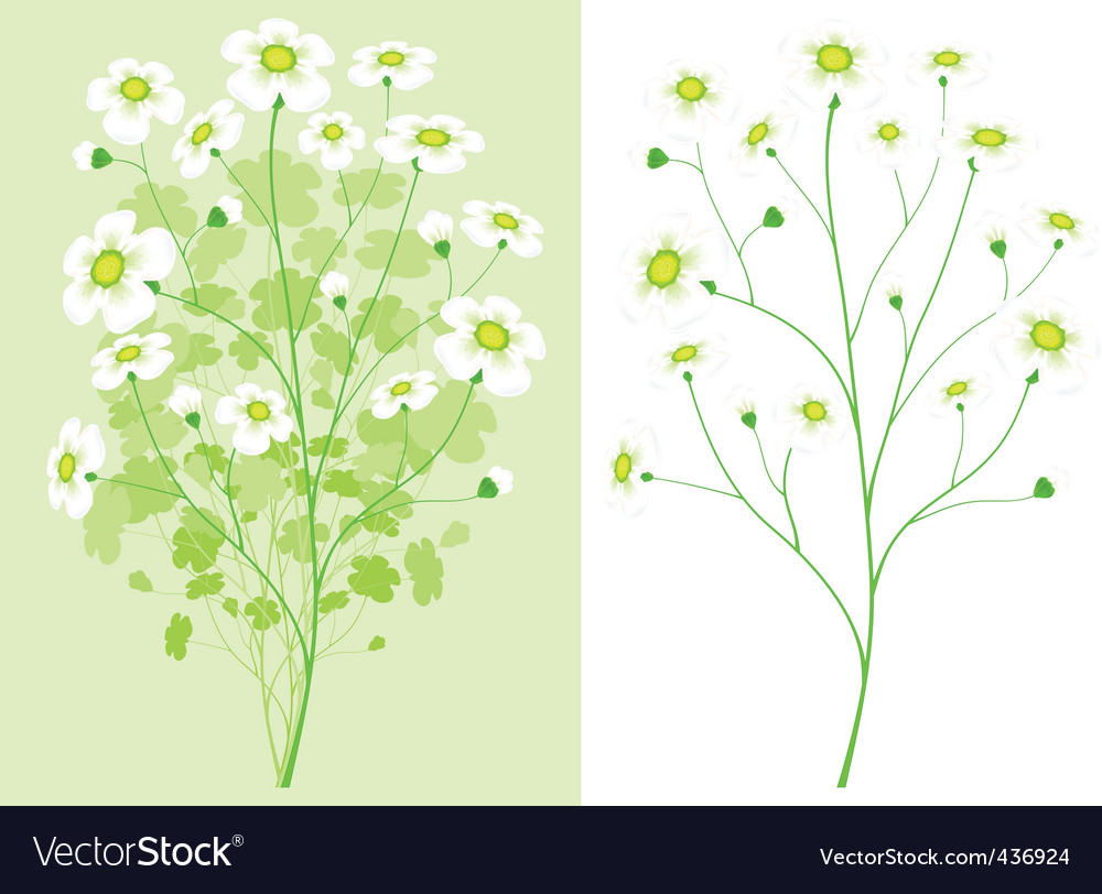 Green branch with white flower vector | Price: 1 Credit (USD $1)