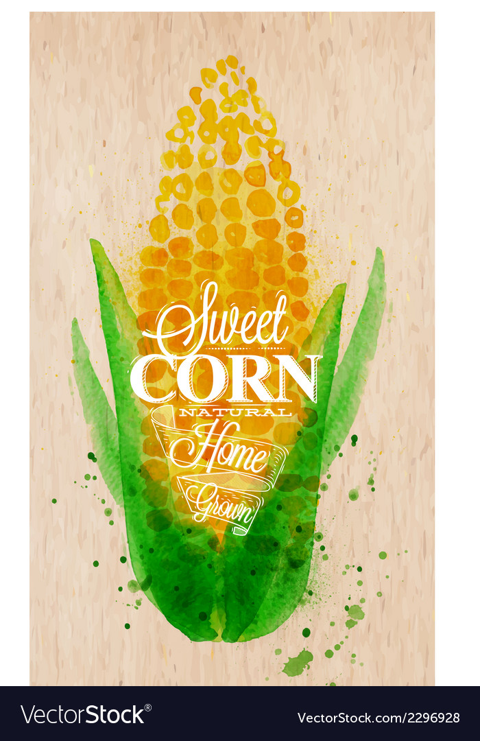 Corn watercolor poster vector | Price: 1 Credit (USD $1)