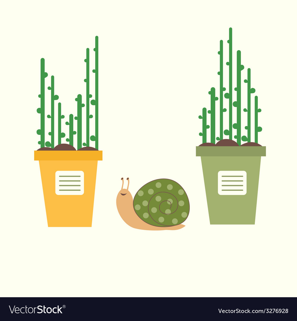 Flowerpots and snail vector   Price: 1 Credit (USD $1)