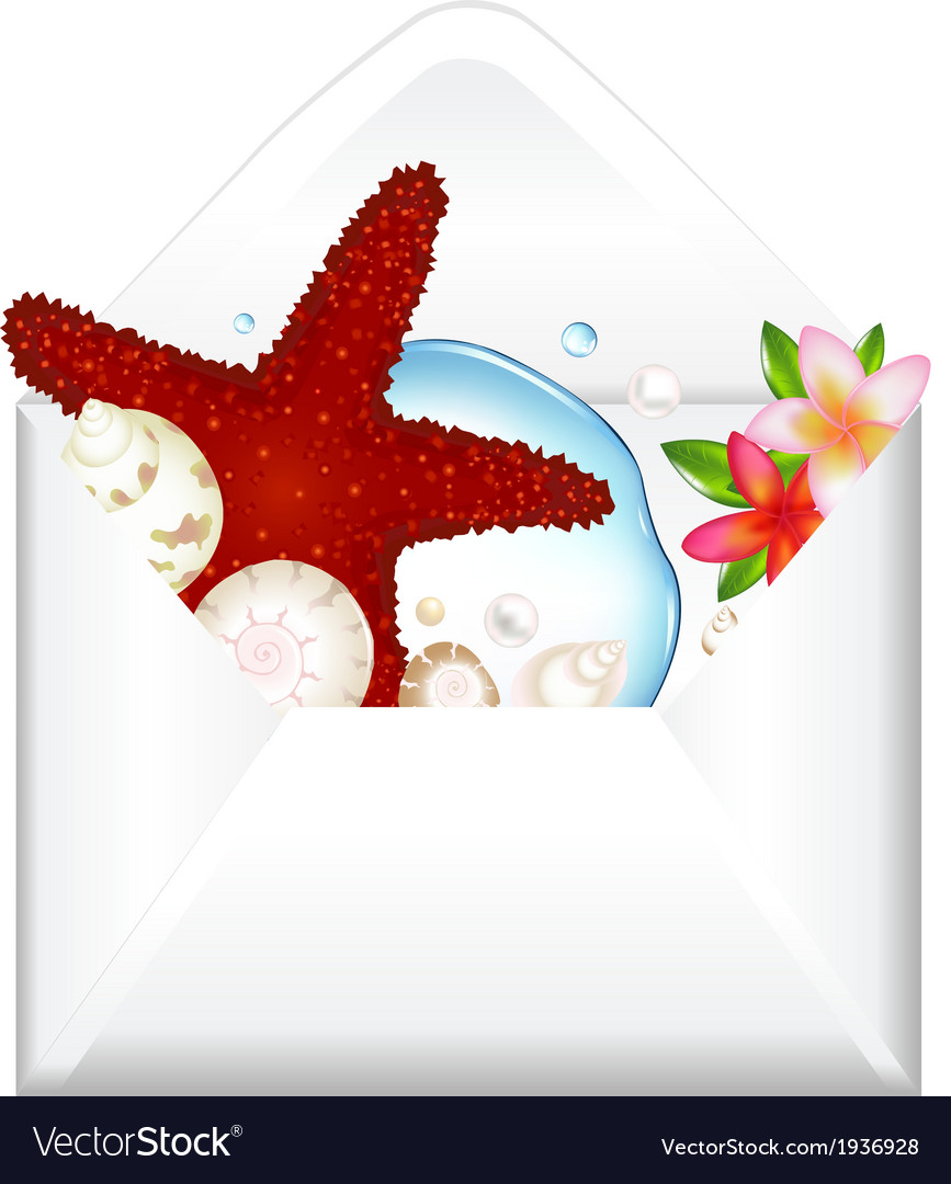 Open envelope with starfish and flowers vector | Price: 1 Credit (USD $1)