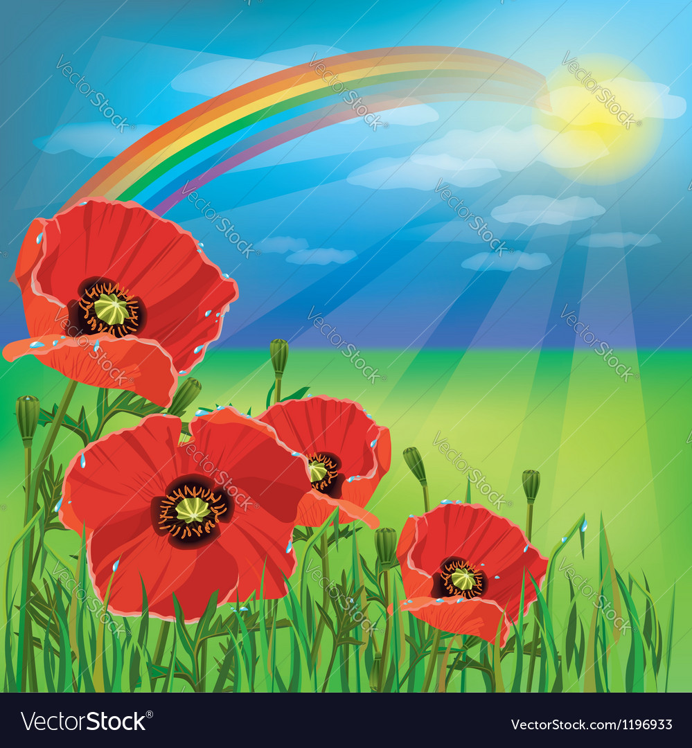 Nature background summer landscape with poppies vector | Price: 1 Credit (USD $1)