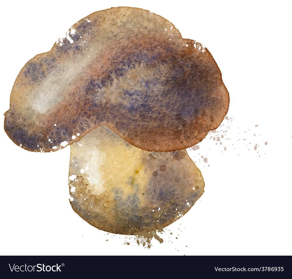 Mushroom logo design template nutrition or vector | Price: 1 Credit (USD $1)