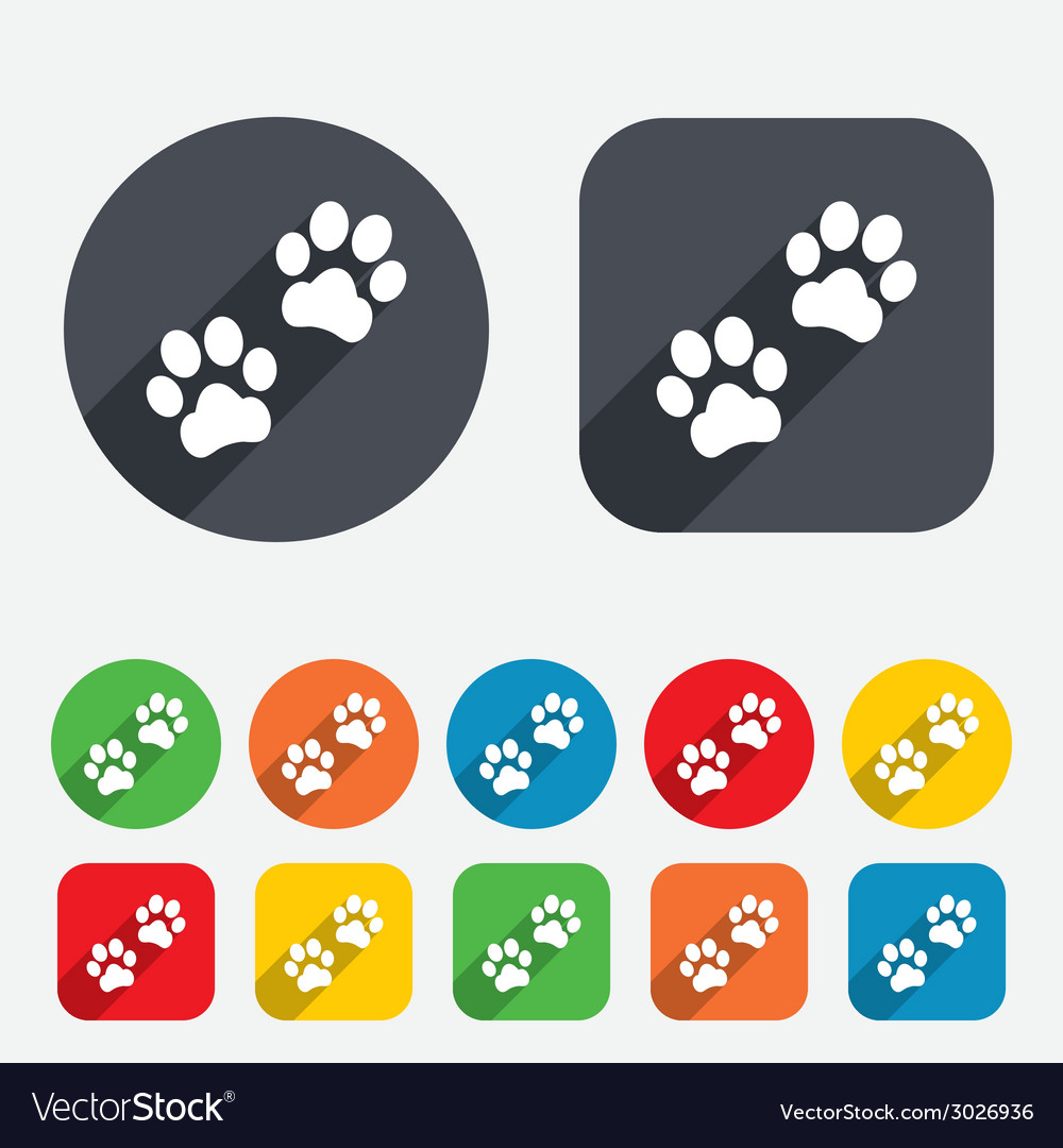 Paw sign icon dog pets steps symbol vector | Price: 1 Credit (USD $1)