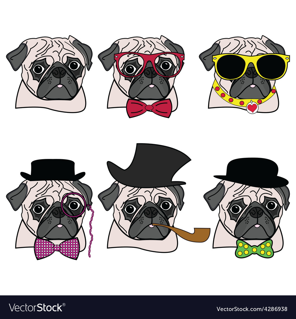 Pugs hipsters vector | Price: 1 Credit (USD $1)