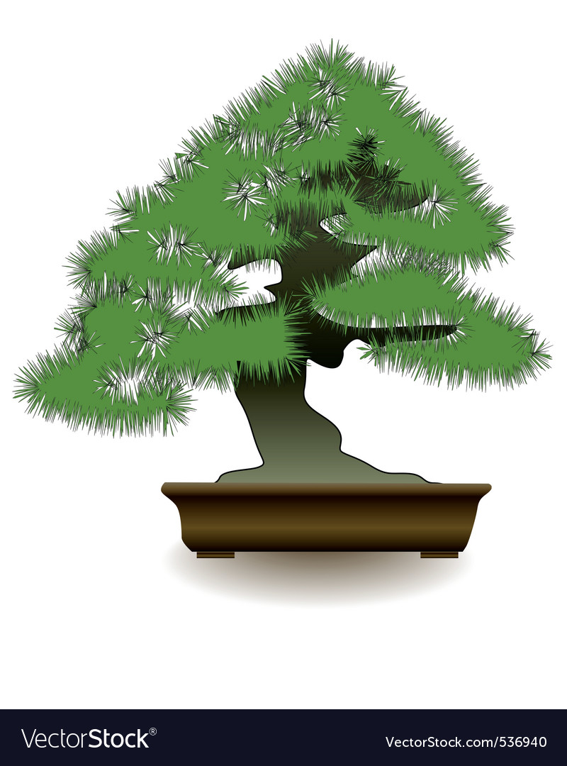 Japanese bonsai tree on white background vector | Price: 1 Credit (USD $1)