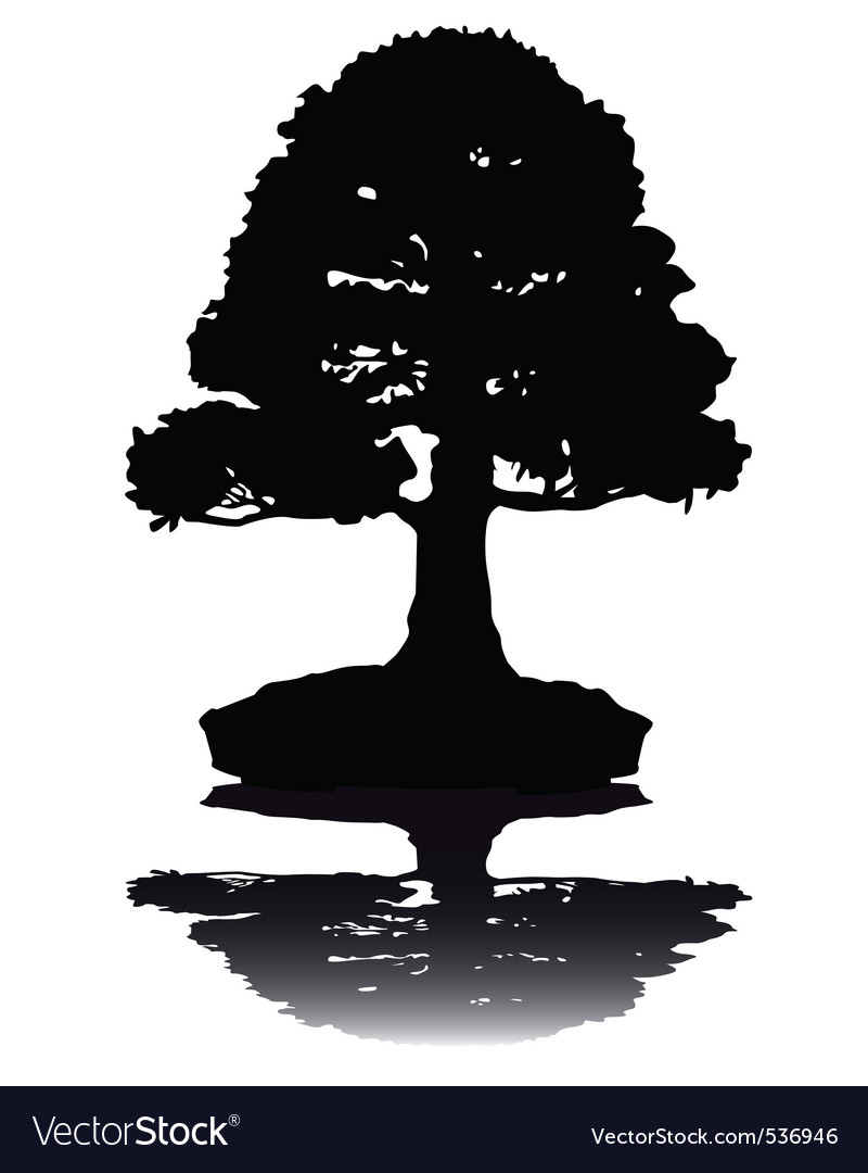 Japanese bonsai tree silhouette on white backgroun vector | Price: 1 Credit (USD $1)