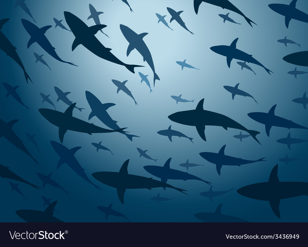 Shark school vector | Price: 1 Credit (USD $1)