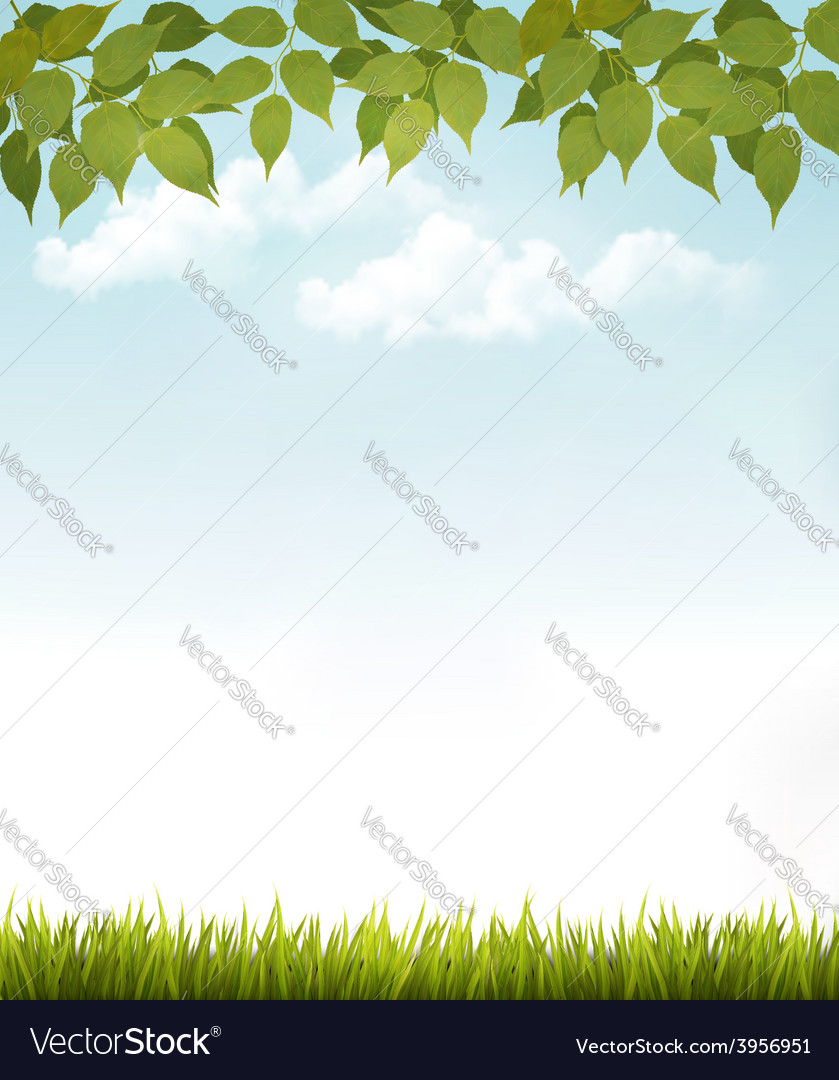 Nature background with leaves and grass vector   Price: 3 Credit (USD $3)