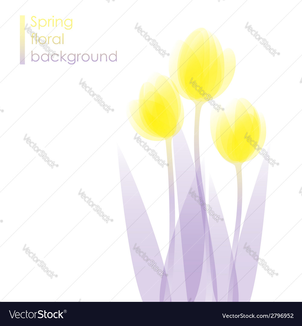 Tulip flowers vector | Price: 1 Credit (USD $1)