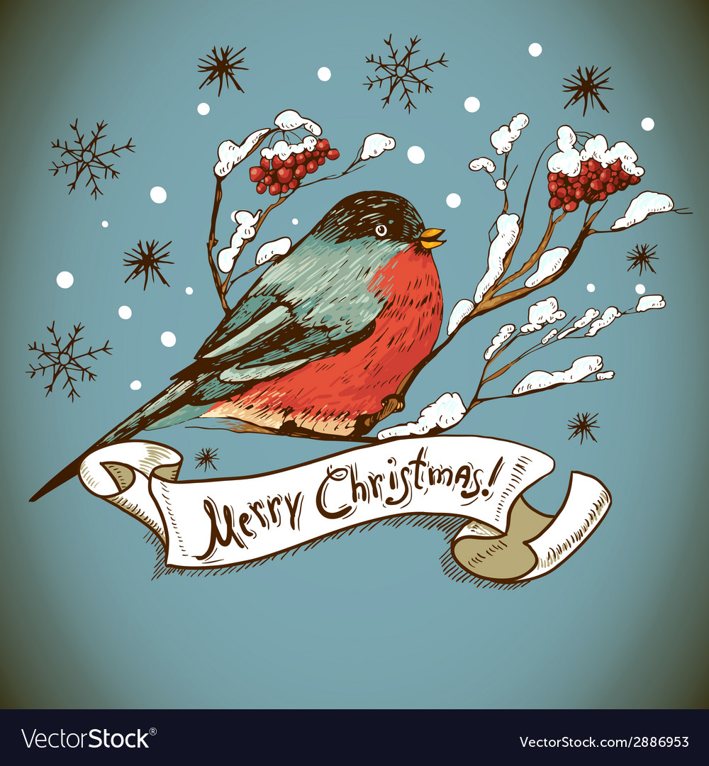 Christmas greeting card with bullfinches vector | Price: 1 Credit (USD $1)