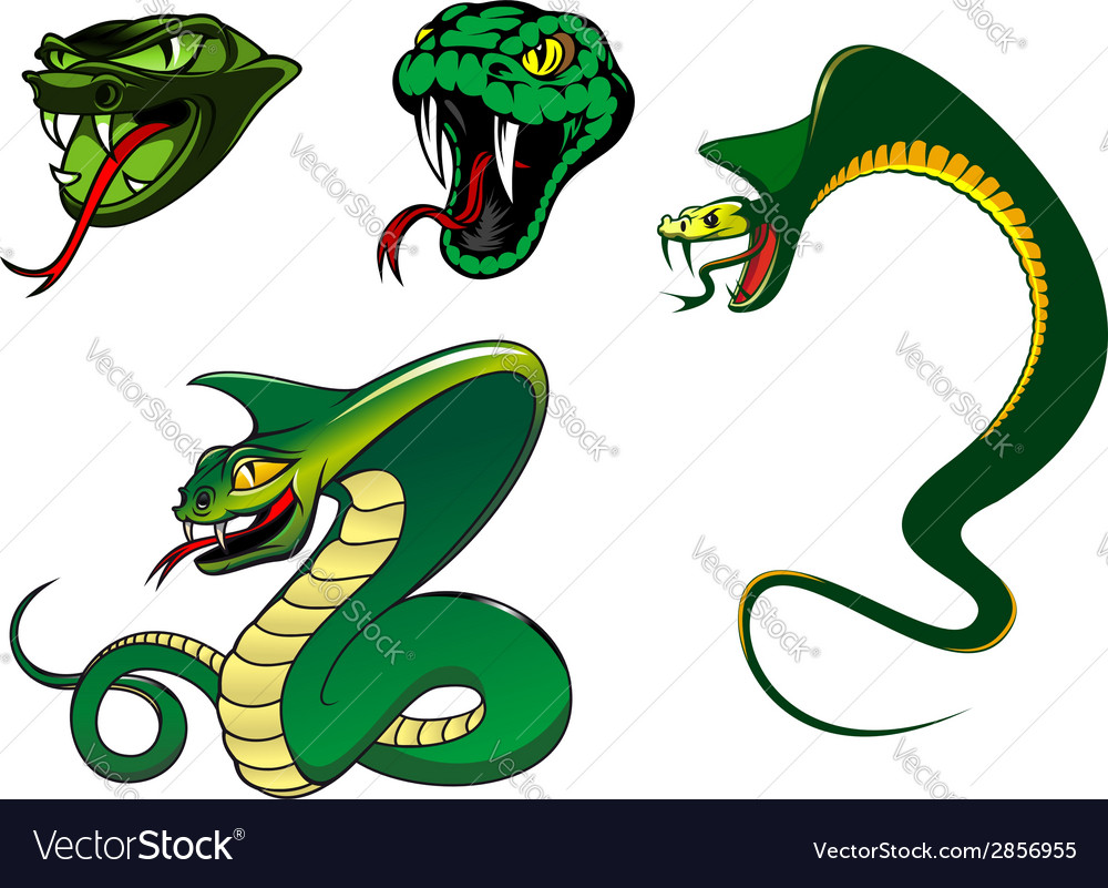 Cartoon angry snake characters vector | Price: 1 Credit (USD $1)