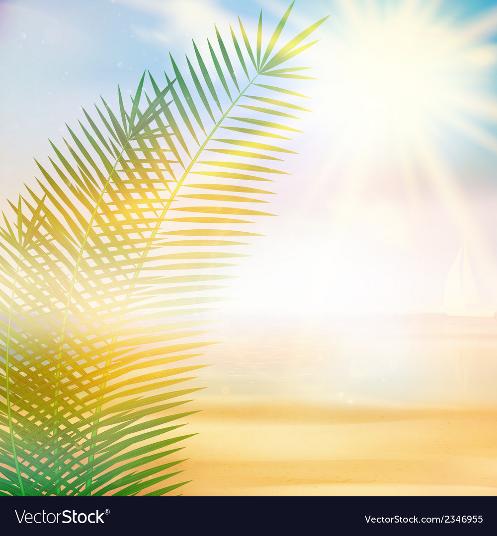 Tropical beach summer template vector | Price: 1 Credit (USD $1)