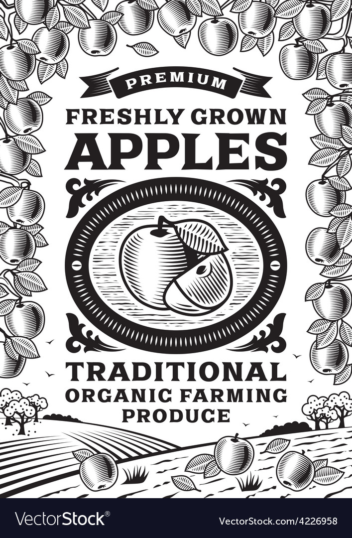 Retro apples poster black and white vector | Price: 3 Credit (USD $3)