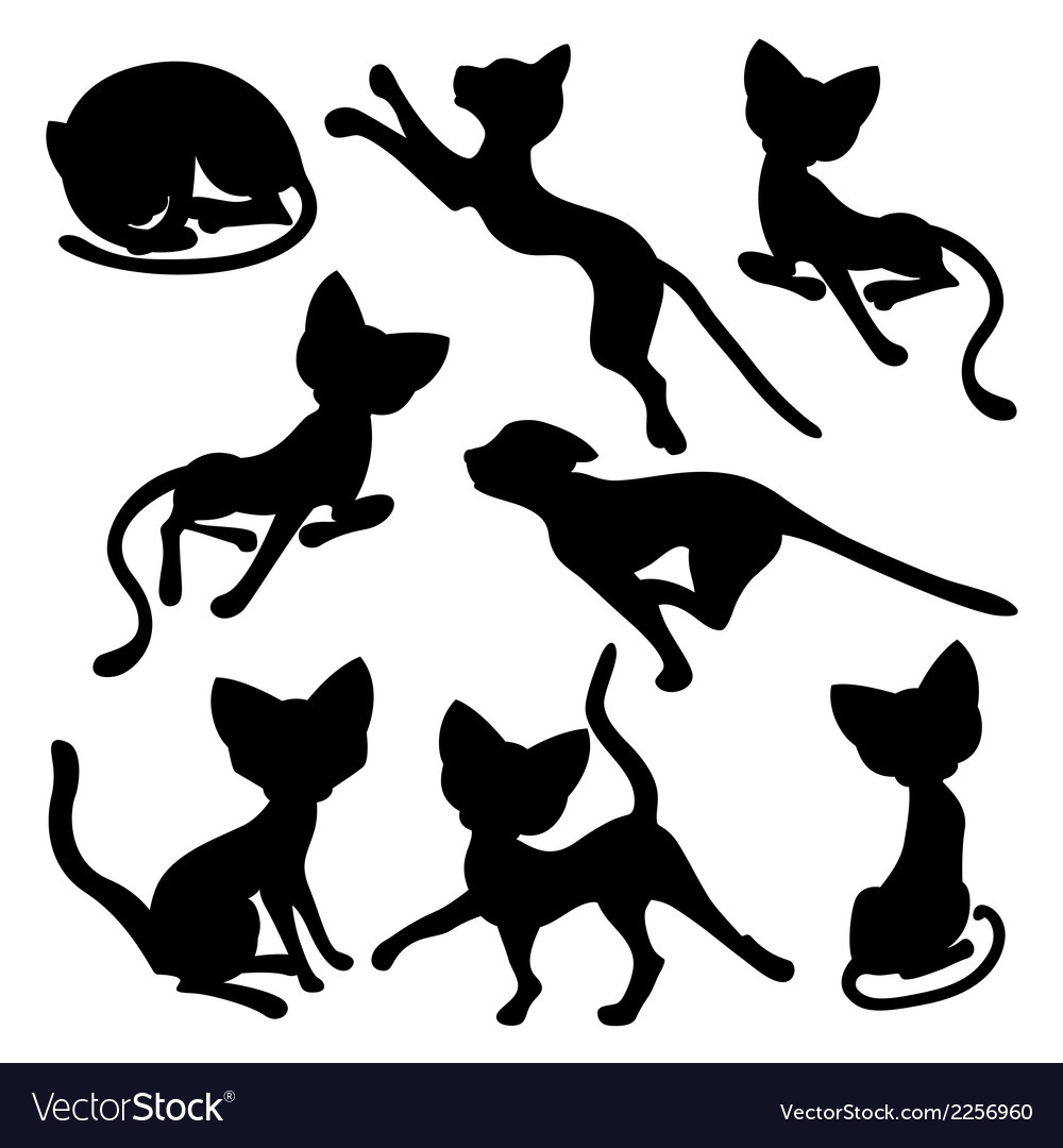 Eight silhouettes of funny cats vector | Price: 1 Credit (USD $1)