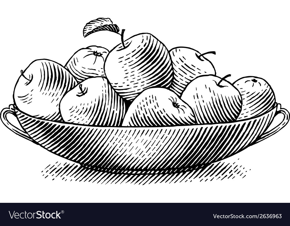Engraved apples vector | Price: 1 Credit (USD $1)