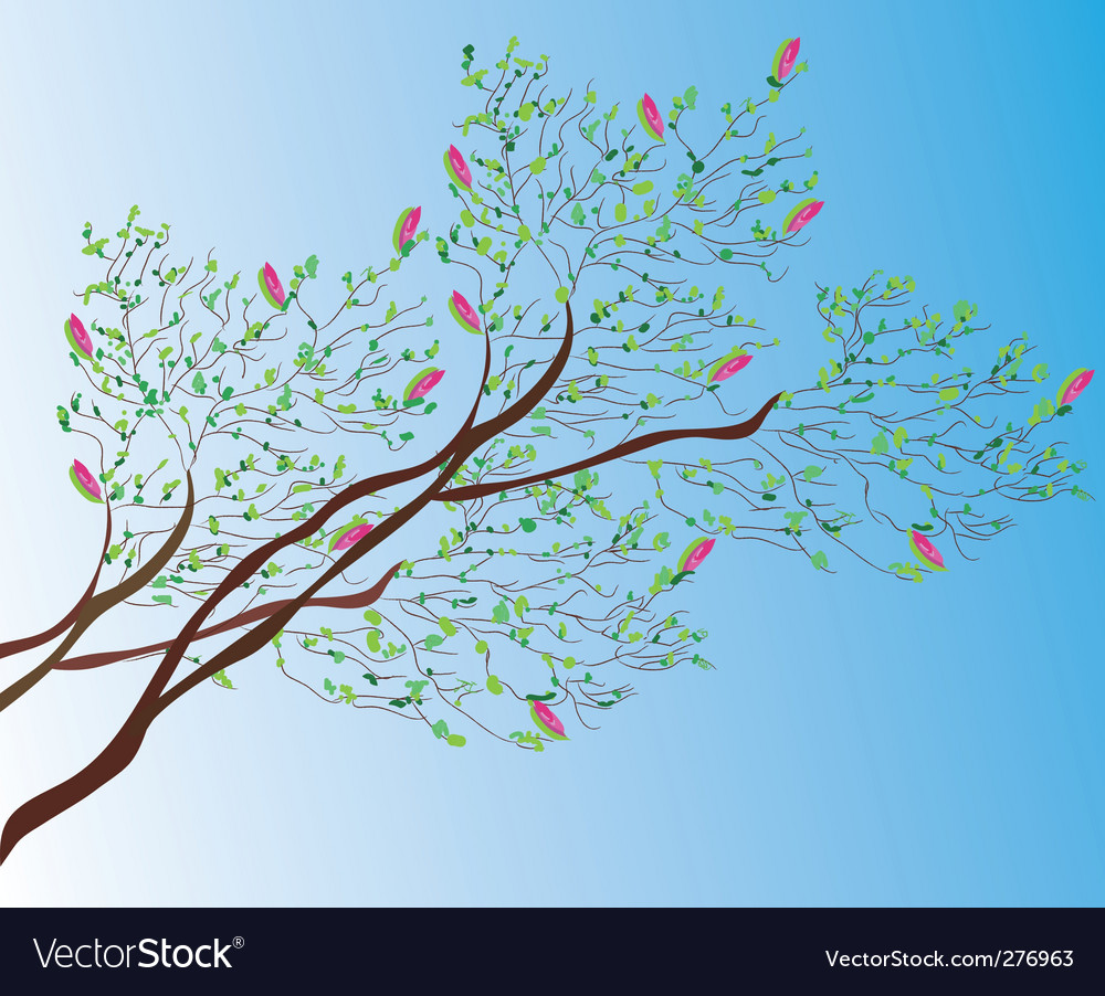 Magnoliabackground vector | Price: 1 Credit (USD $1)