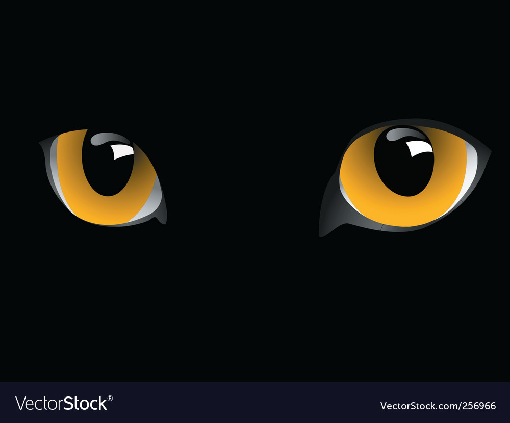 Cats eyes vector | Price: 1 Credit (USD $1)