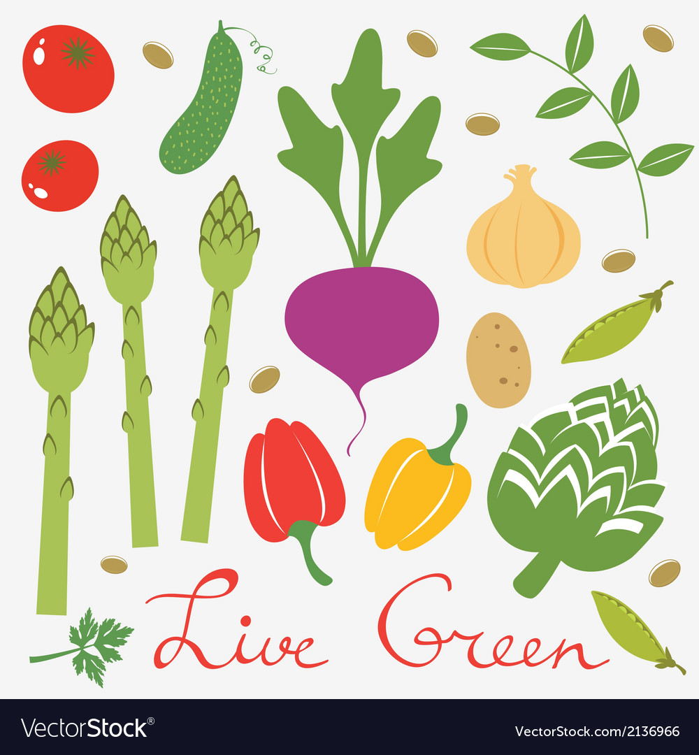 Fresh vegetables set vector | Price: 1 Credit (USD $1)