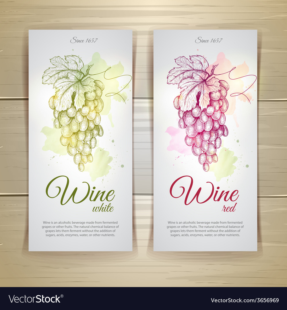 Set of wine labels grapes sketch vector | Price: 1 Credit (USD $1)