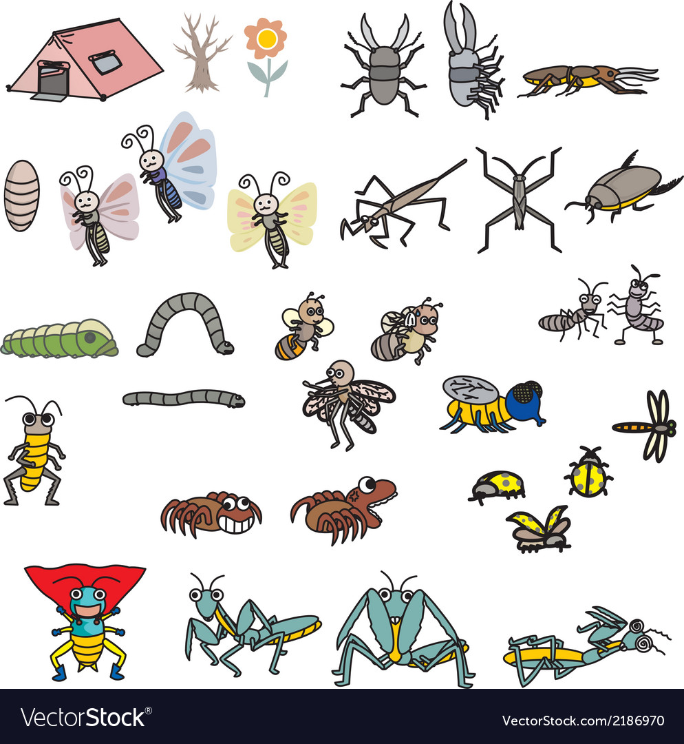Insects action vector | Price: 1 Credit (USD $1)