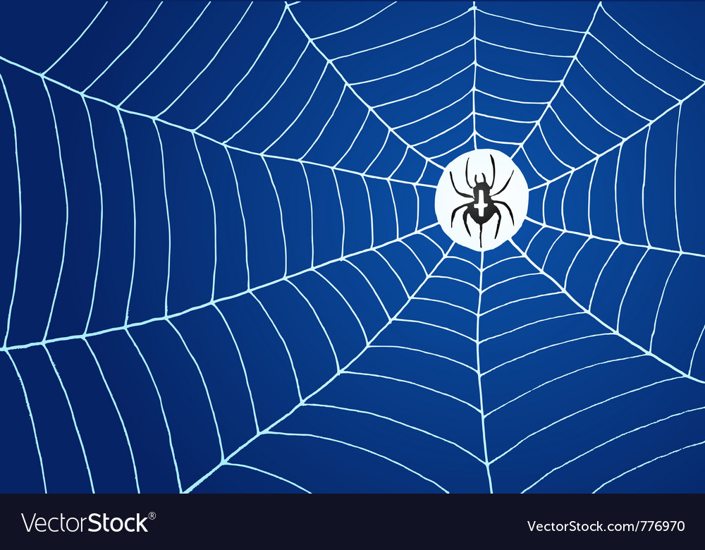 Spider and net vector | Price: 1 Credit (USD $1)