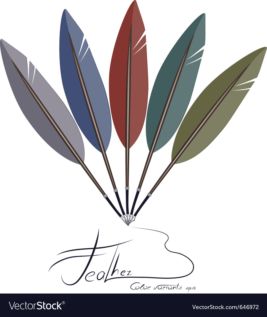 Feather fantail vector | Price: 1 Credit (USD $1)