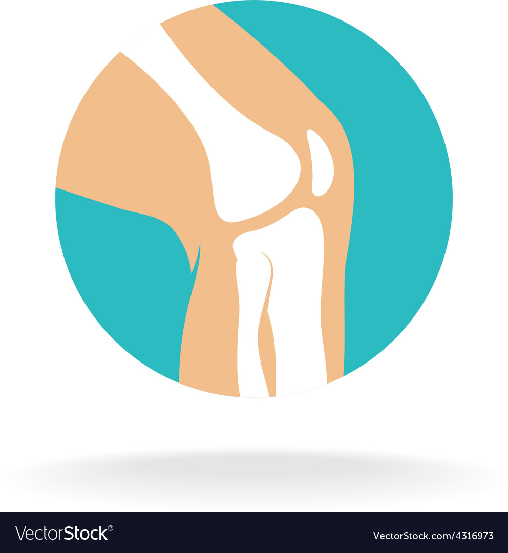 Knee joint logo vector | Price: 1 Credit (USD $1)
