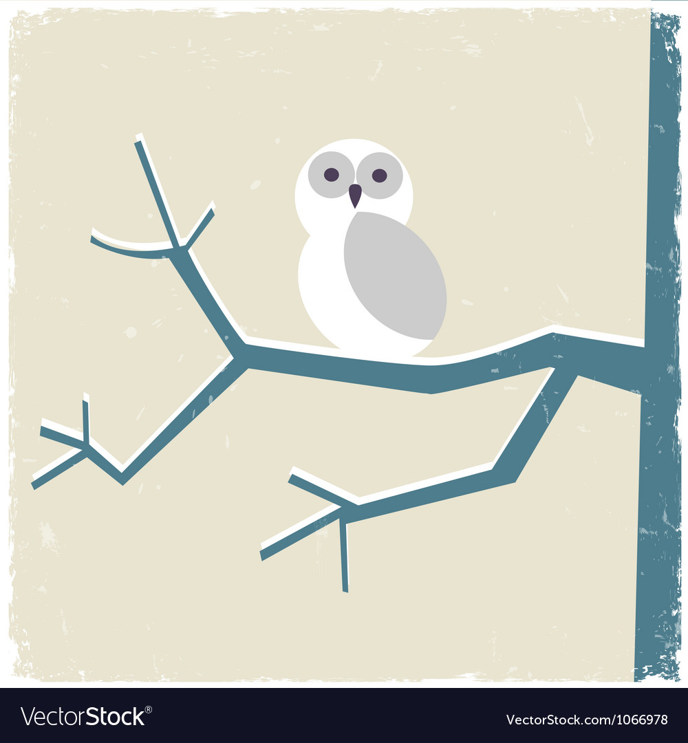 Snowy white owl vector | Price: 1 Credit (USD $1)