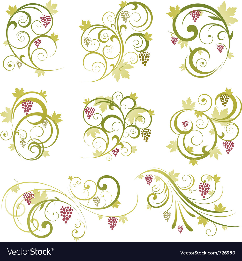 Wine design ornament vector | Price: 1 Credit (USD $1)