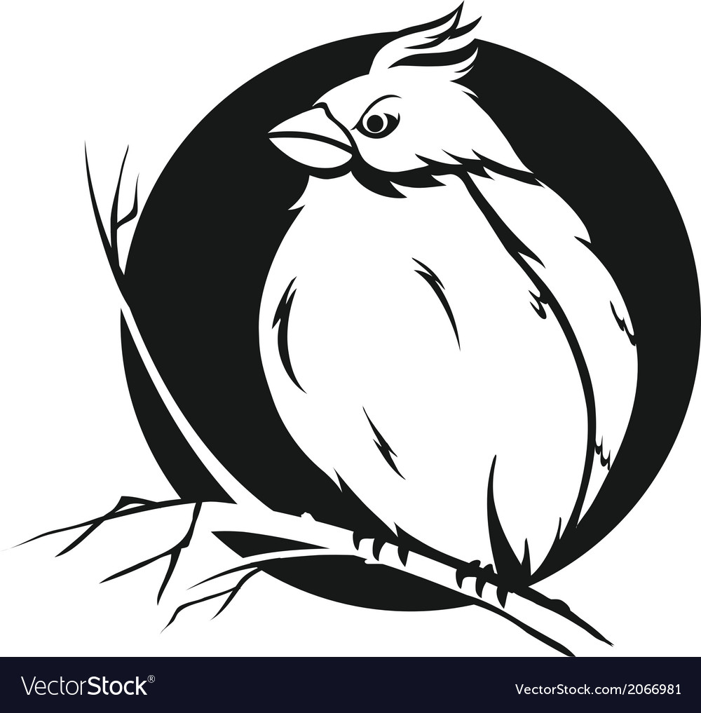Bird on branch vector | Price: 1 Credit (USD $1)