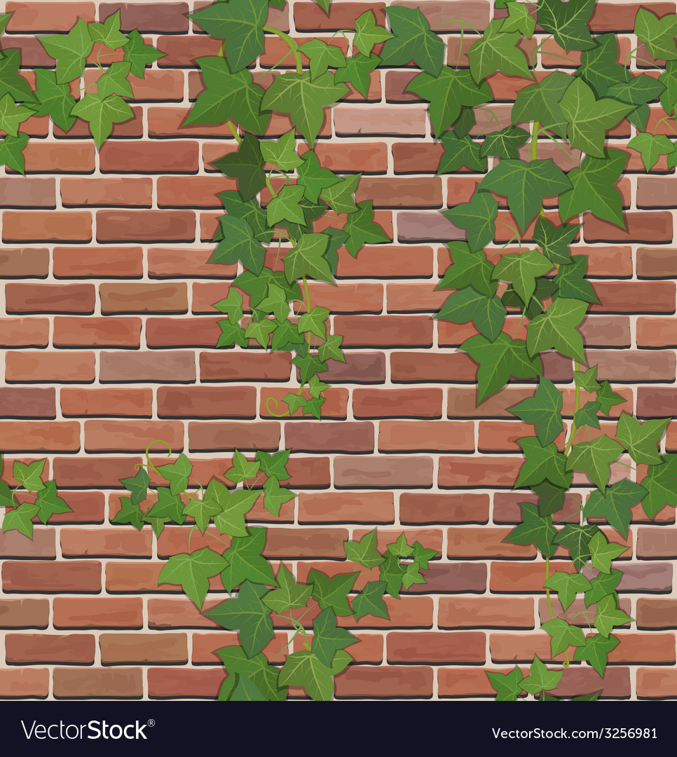 Brick and ivy texture vector | Price: 1 Credit (USD $1)