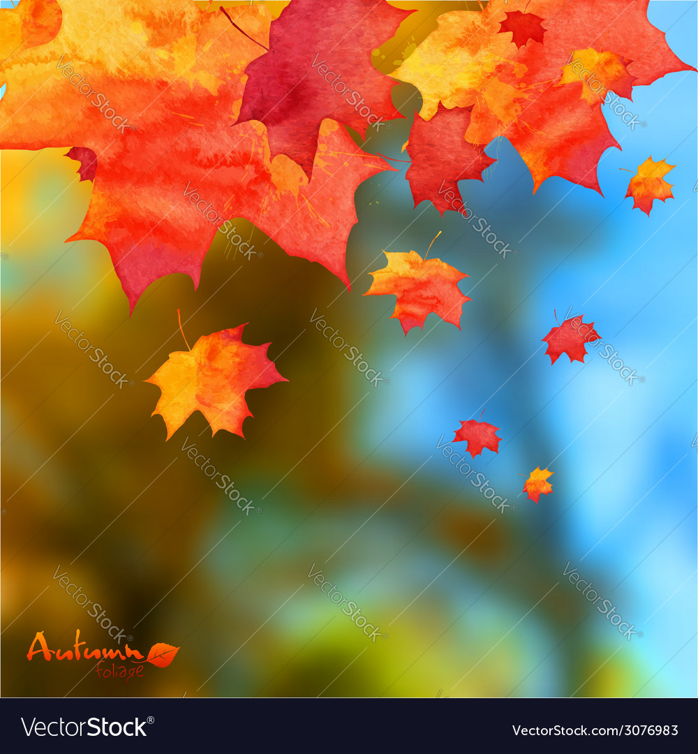 Autumn watercolor leaves on blurred photo vector | Price: 1 Credit (USD $1)