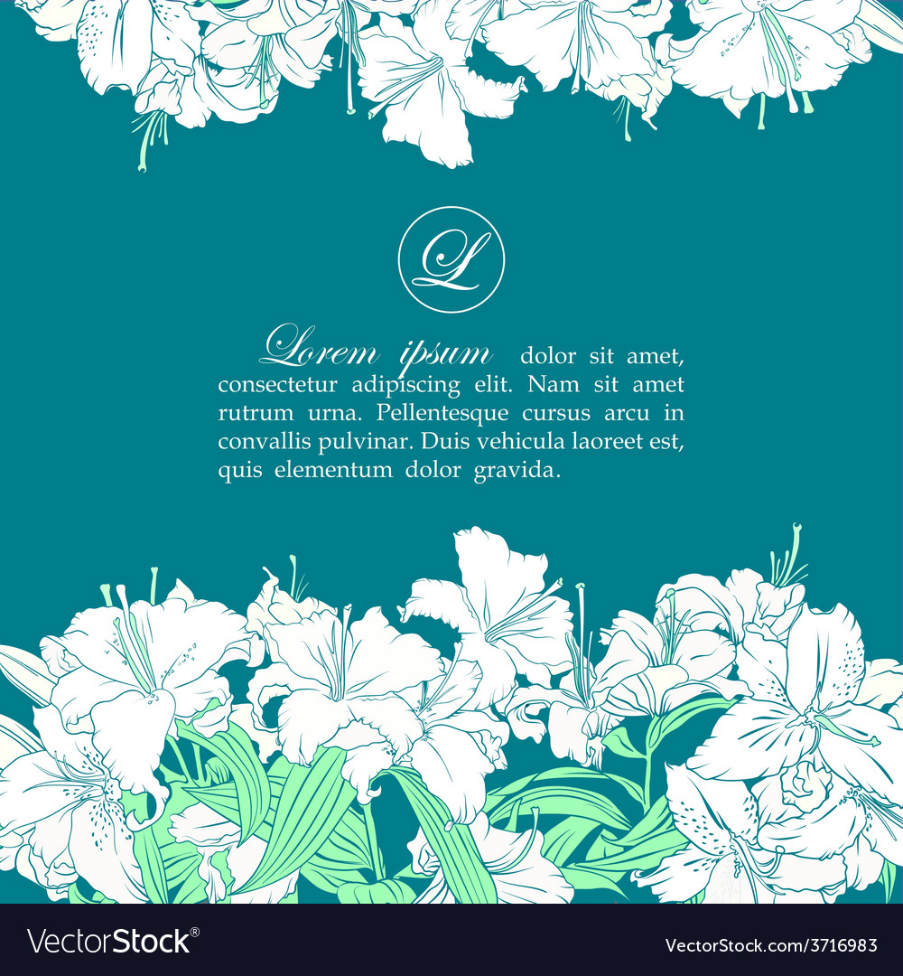 Card template with white lilies vector | Price: 1 Credit (USD $1)