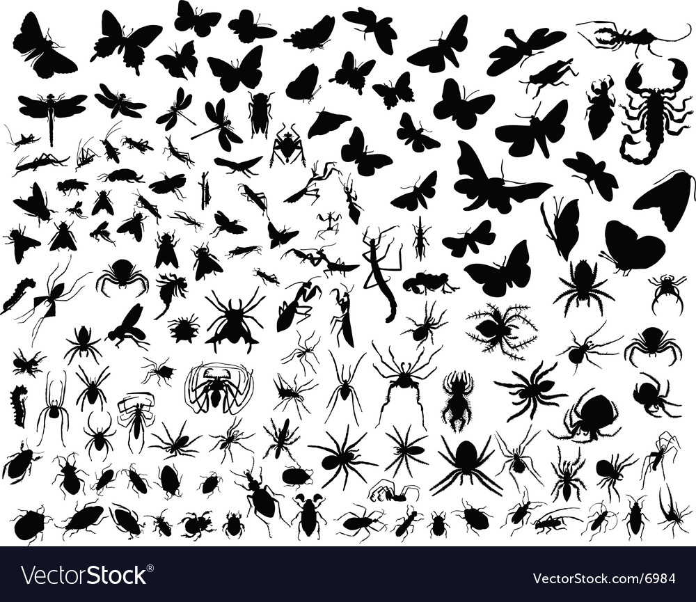 Insects silhouettes vector | Price: 1 Credit (USD $1)