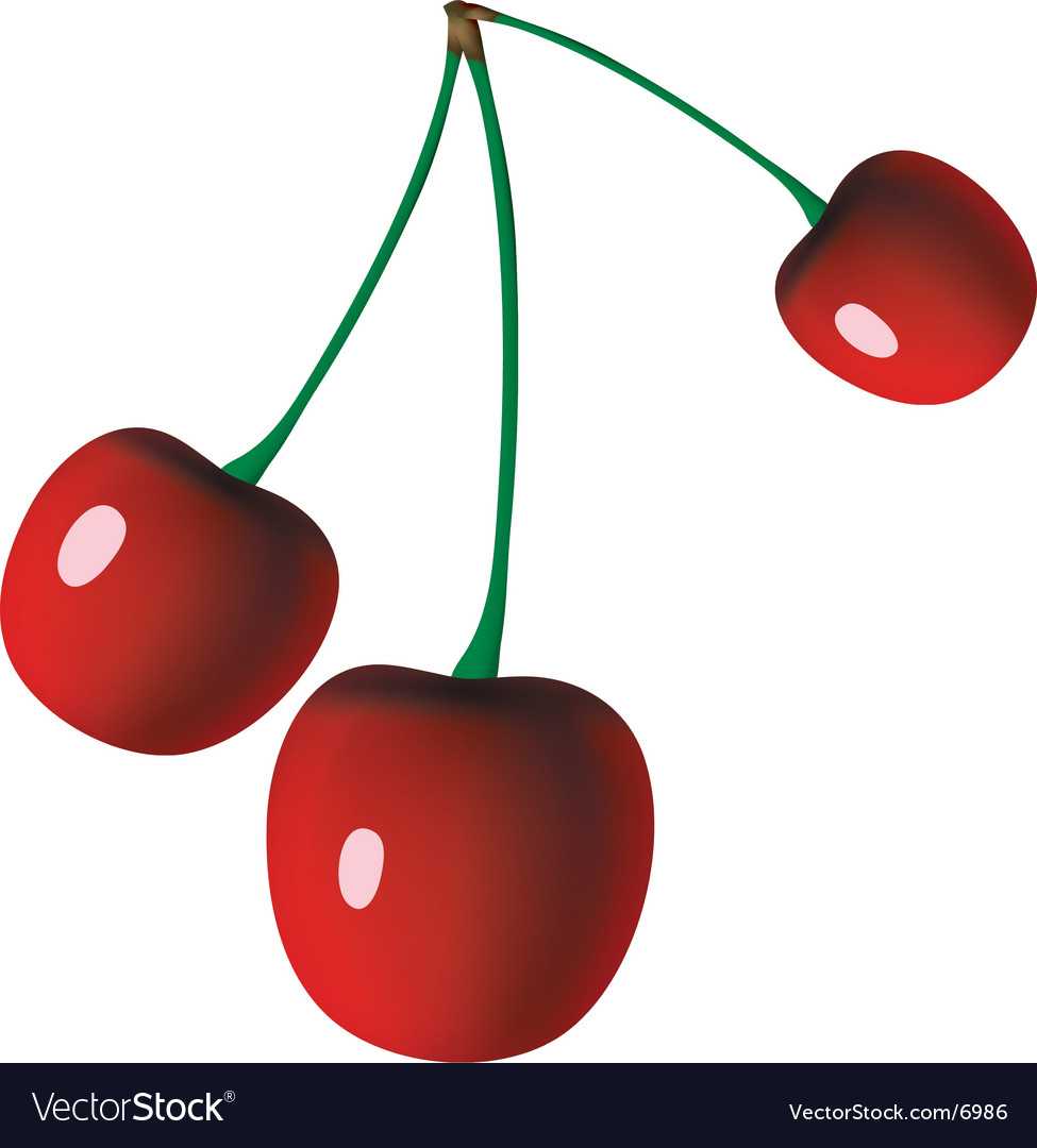 Grade cherries vector | Price: 1 Credit (USD $1)