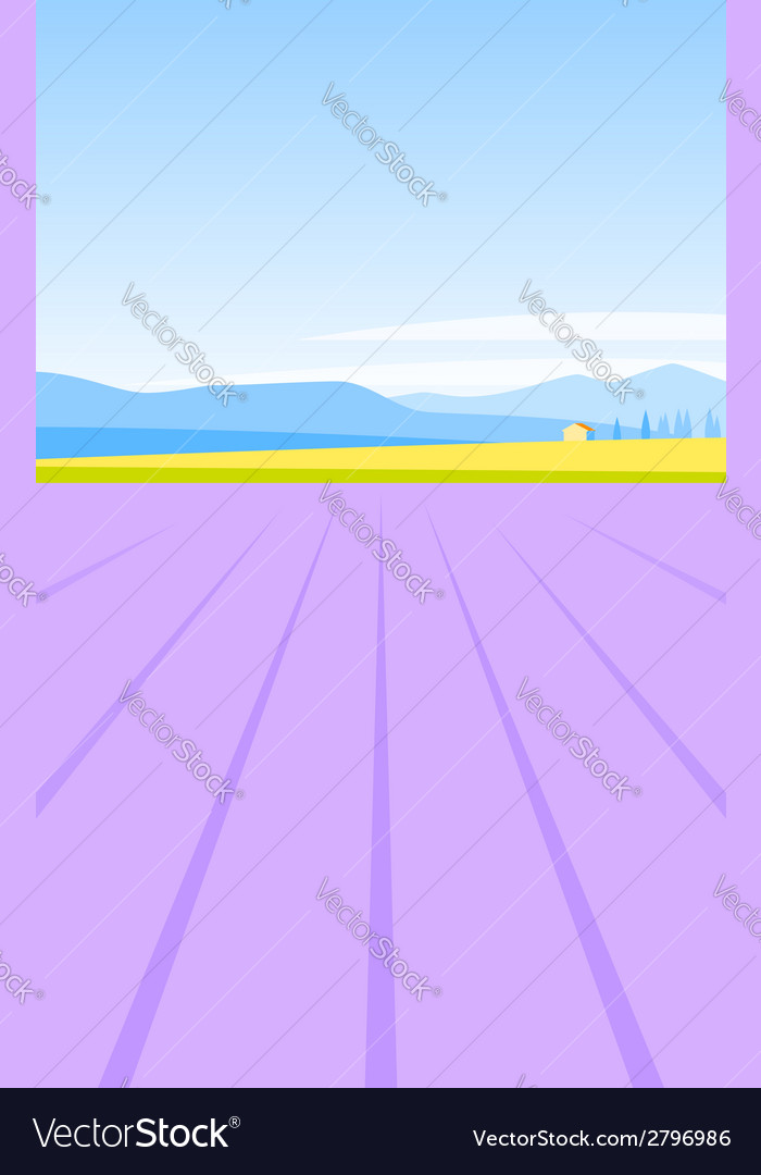 Lavender field vector | Price: 1 Credit (USD $1)